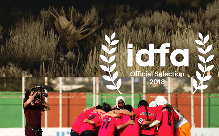 IDFA announcement image